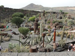 20150112125518 Ogród kaktusów wokolicy Guatiza