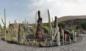 20150112130910_stitch Ogród kaktusów w okolicy Guatiza
